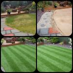 Unusual shaped lawns by Bingham Ground Services